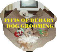 Fifis-Of-Debary-Dog-Grooming_SOOSR